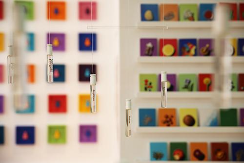 Une photo détail des ateliers parfums Sillages Paris. Les fioles contenant les ingrédients purs volent dans un orgue suspendu. En arrière plan, on peut voir les cartes postales de toutes les couleurs qui correspondent à chaque ingrédient. Ici apparaissent des fioles de baies roses, angélique, ambre, amande.