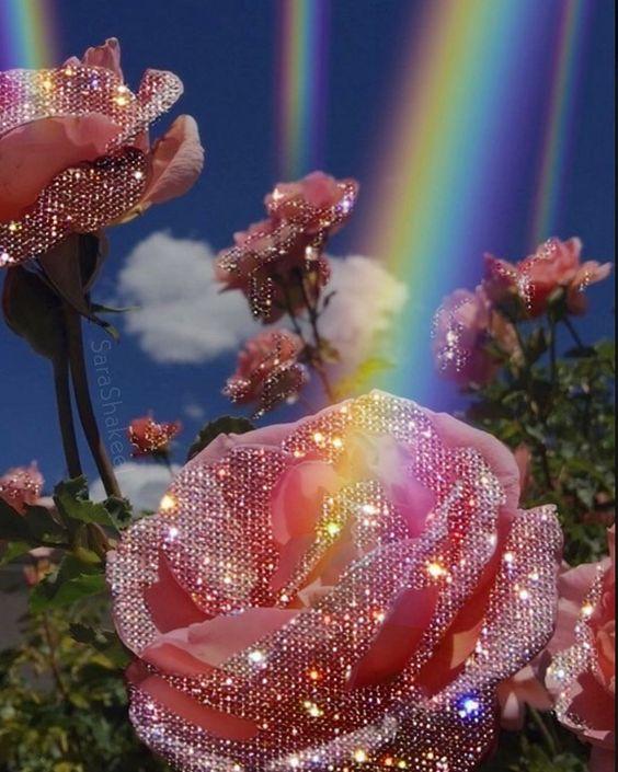 Roses à pailettes au pied d'arc-en-ciels, les superstars du parfum rose