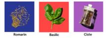 Nos ingrédients aromatiques issus de l'histoire du parfum : Romarin, Basilic et Ciste