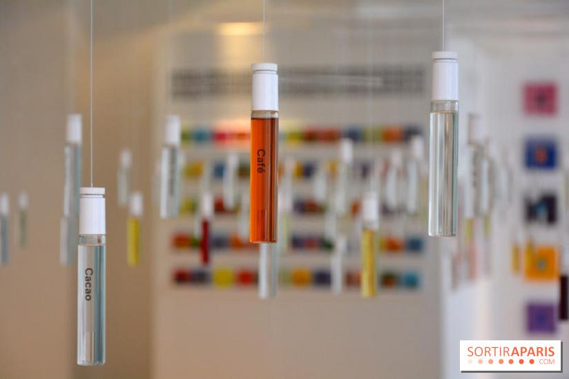 ingrédients naturels vs ingrédients synthétiques : ce qu'on utilise chez Sillages Paris